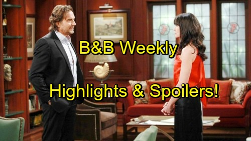 'The Bold and the Beautiful' Spoilers: Quinn and Ridge Runway Fight - Steffy Offered CEO Post To Dump Liam